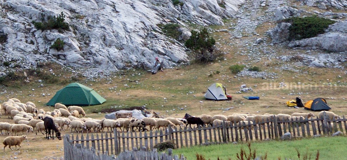 Camping Dobërdol