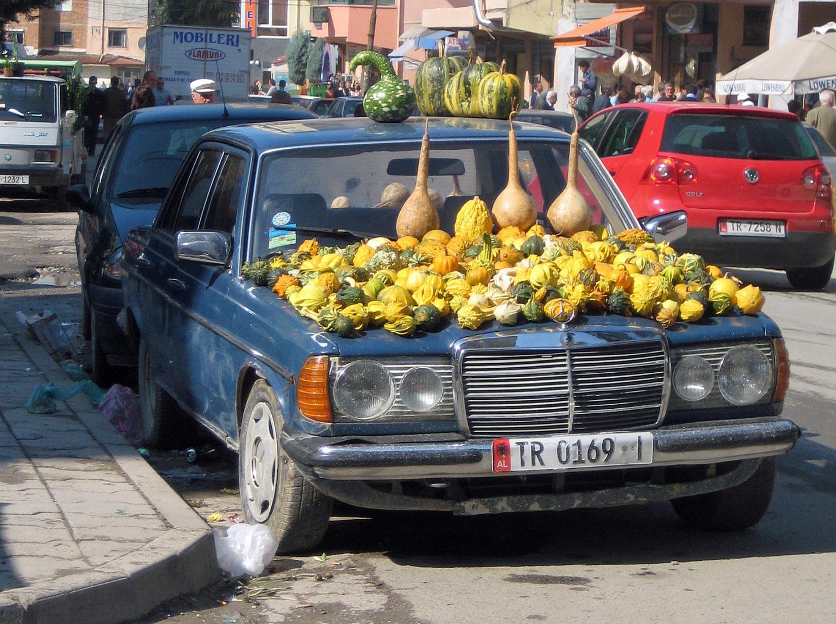 Verkauf von Kürbissen in Tirana