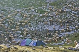 Albanische Alpen: Touristen treffen auf Einheimische